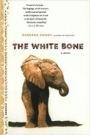 The Afternoon Book Group discusses The White Bone by Barbara Gowdy.