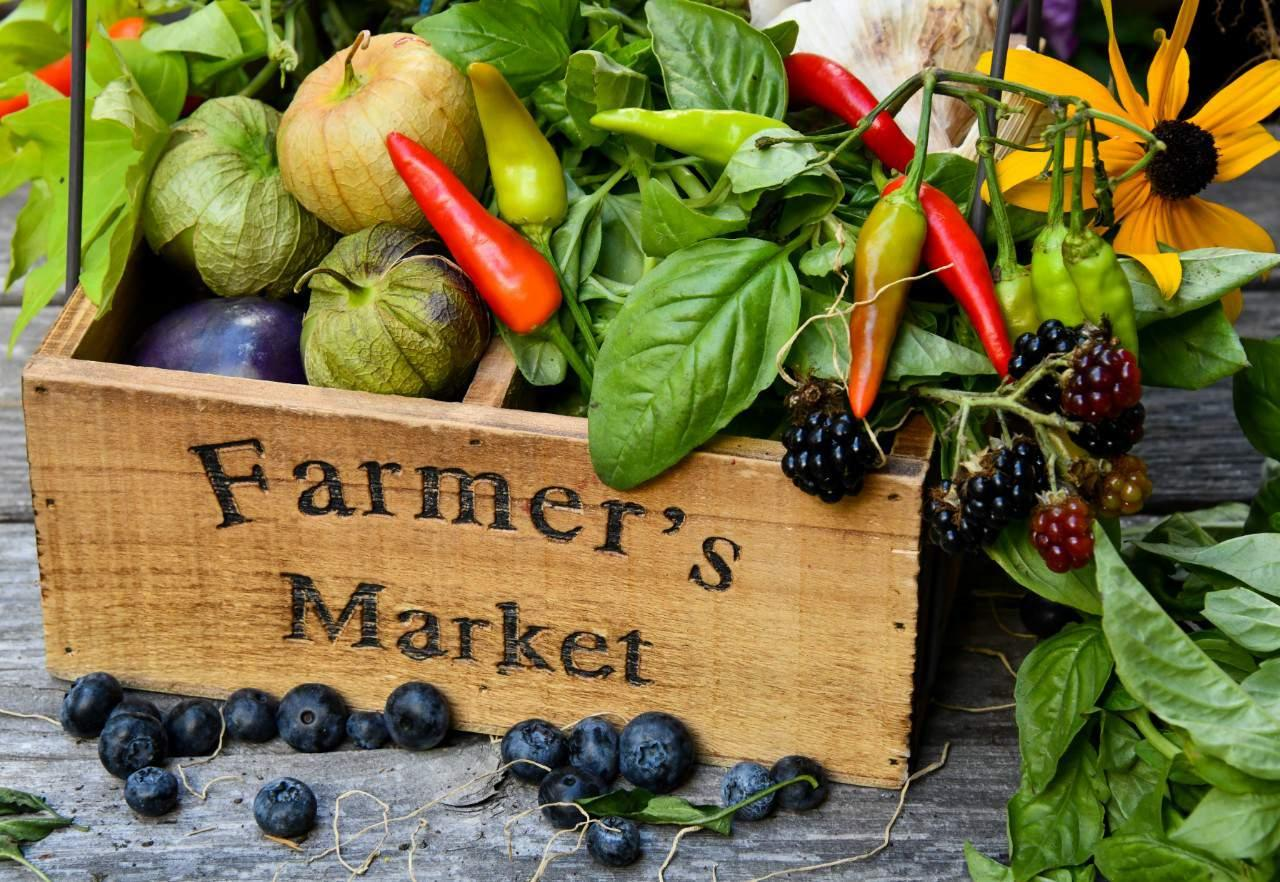 Seeking Farmer's Market Vendors