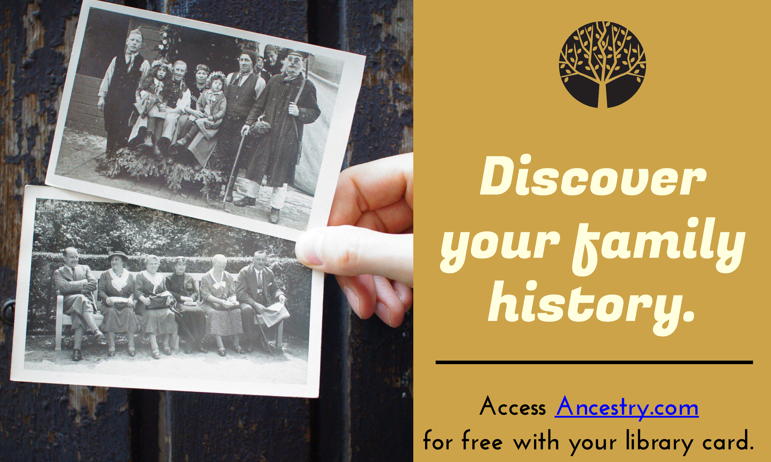 Discover your family history.